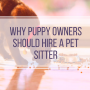 Puppy Owners Hire Pet Sitter